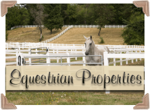 Equestrian Properties - Palm Beach Real Estate, Inc.
