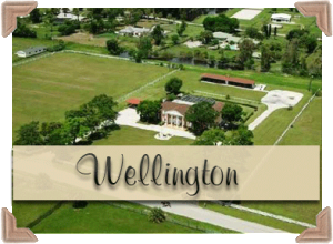 Wellington Real Estate Properties