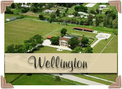 Houses_For_Sale_in_Wellington_Florida_Palm_Beach_Real_Estate_Inc